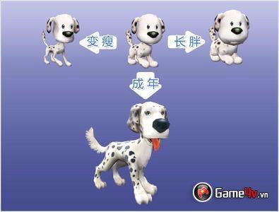 Pet Kingdom Online: Vương Quốc Thú Cưng