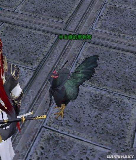 Hướng dẫn nhiệm vụ kỳ ngộ nhận pet gà Hắc Thích Khách