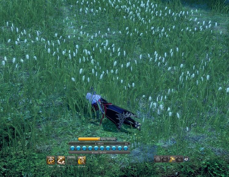 Trạng thái chết trong Blade & Soul - Hình ảnh 2